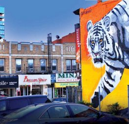 The magnificent mural of the tiger that marks the entrance to Little India in Jersey City is painted by Esteban Kremen, an Argentinian artist from Brooklyn